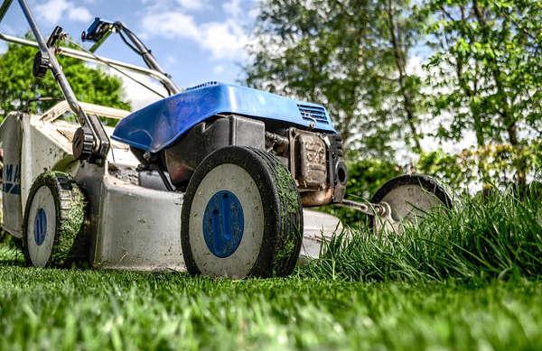 Comment tondre la pelouse pour avoir un beau gazon