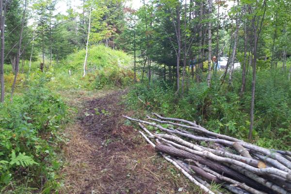 ménage terrain, corde de bois,