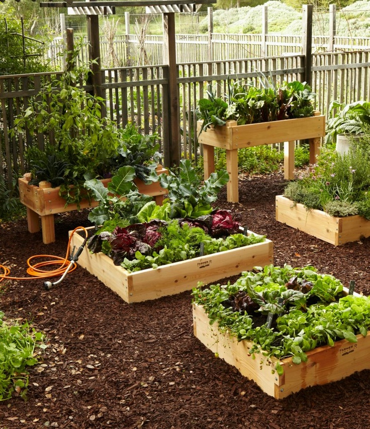 Bacs jardinieres terrasses for Plantes et arbustes de jardin