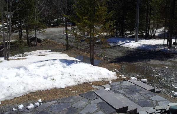 dégel printemps, neige qui fond printemps,
