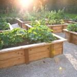 Bac en bois pour le jardinage