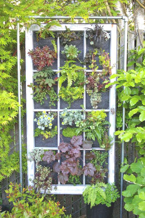 Une fenêtre dans le jardin
