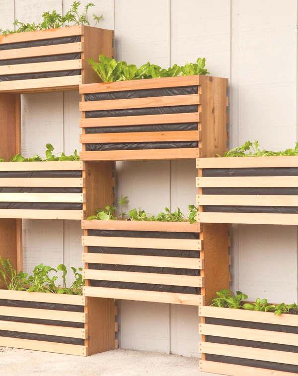 Jardin vertical en caisse de bois