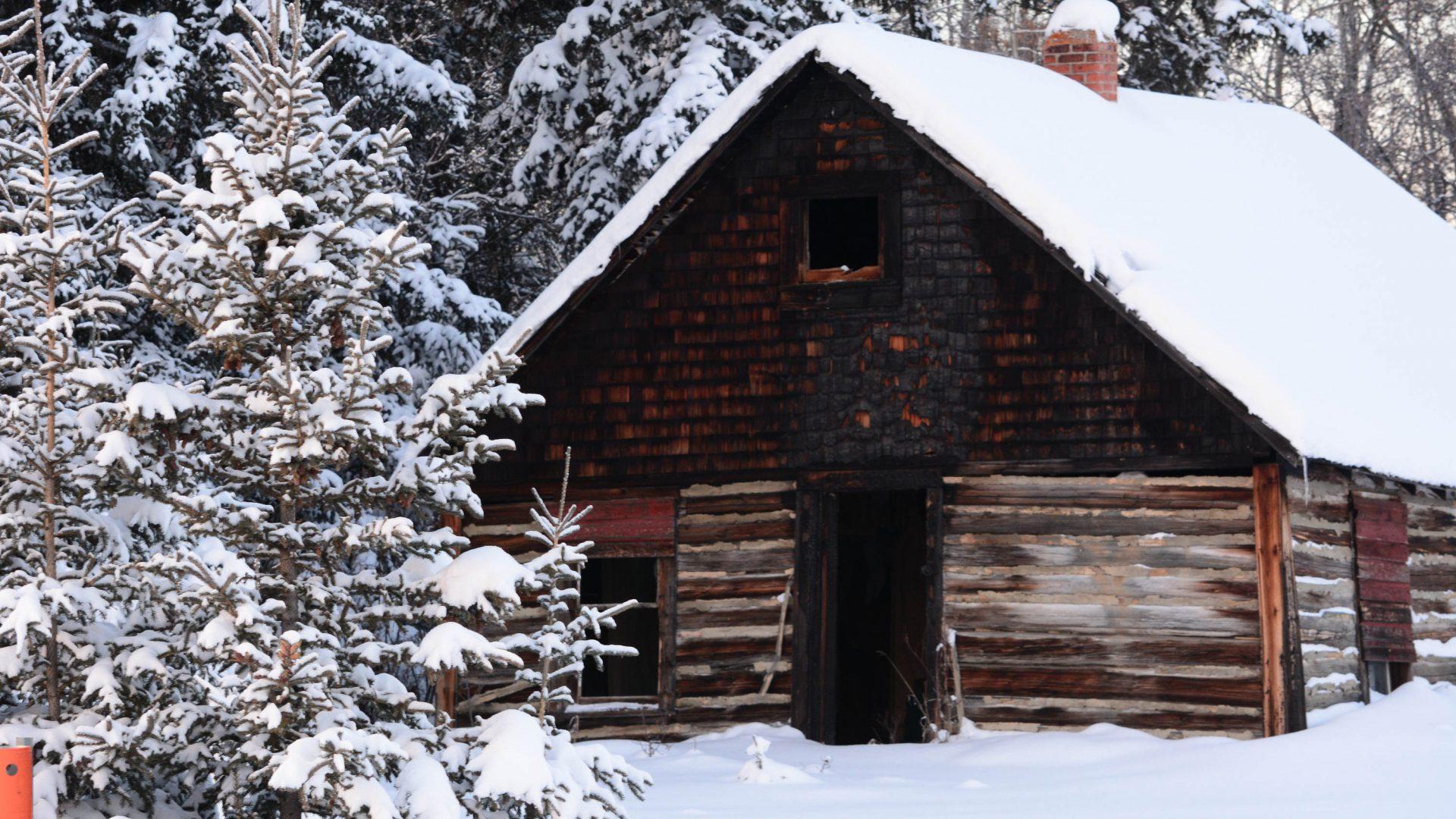 Chic cabane, décoration et aménagement
